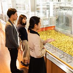 写真:焼酎の工場見学(15分)