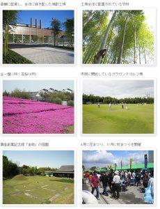 greenery-view